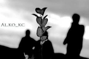Al.ko_kc